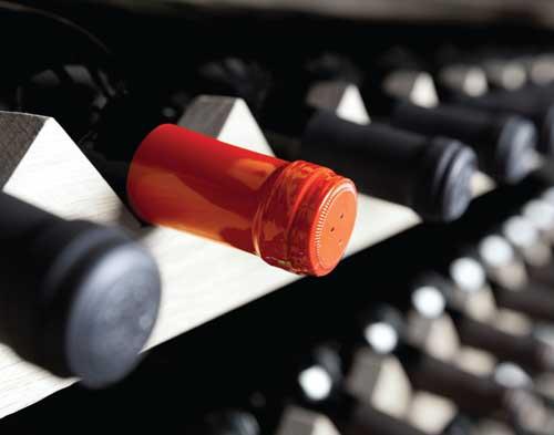 wine-cellar-potential